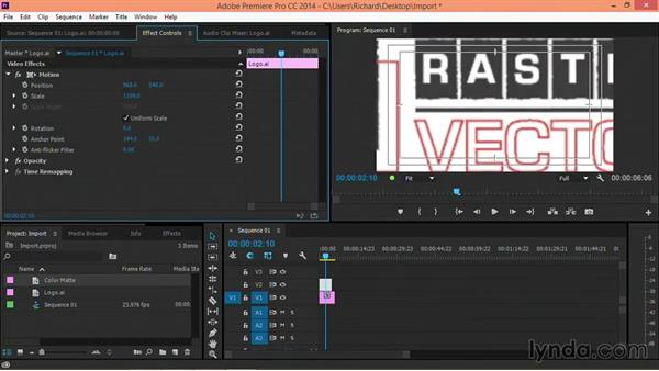 When are vectors converted to rasters?: Motion Graphics for Video Editors: Terms and Technology