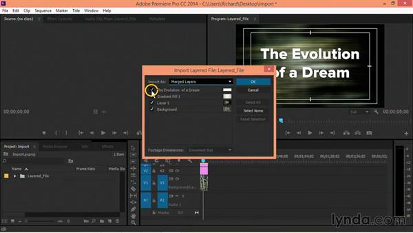 Choosing the right file format for video projects: Motion Graphics for Video Editors: Terms and Technology