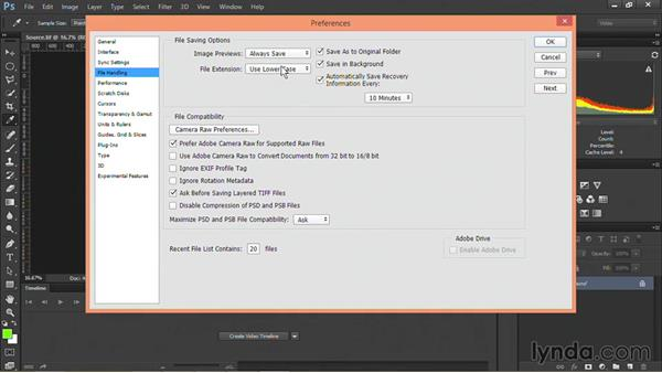 Configuring Photoshop preferences for video workflows: Motion Graphics for Video Editors: Terms and Technology