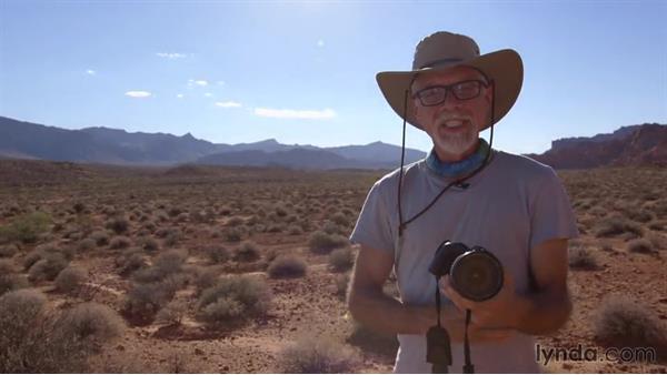 Exploring a backlit landscape: Exploring Photography: Backlighting