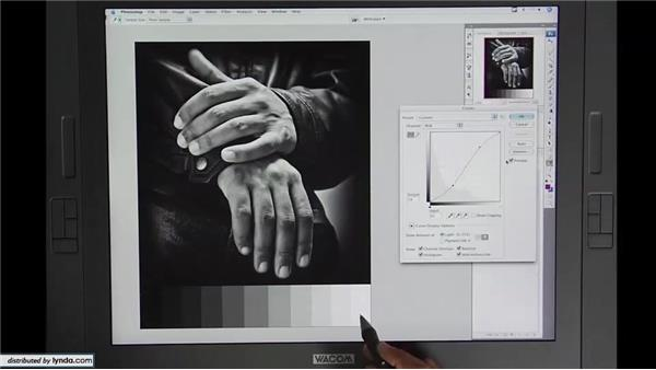 Lesson 2: Curves and grayscale images: Beyond Skin: Going Deeper with Photoshop CS3