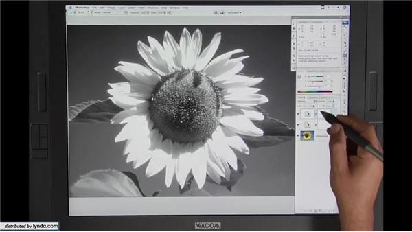 Lesson 6: Black-and-white conversion: Beyond Skin: Going Deeper with Photoshop CS3