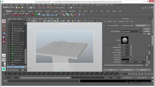 Setting up for caustics: Up and Running with mental ray in Maya