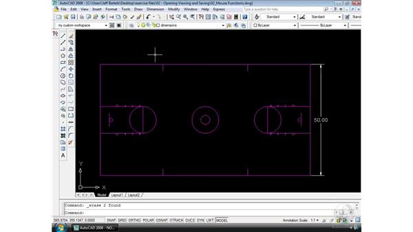 Mouse functions: AutoCAD 2008 Essential Training