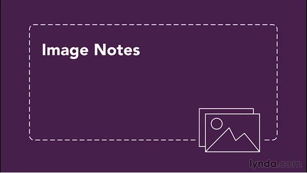 Understanding notes and how to store them: Going Paperless: Start to Finish