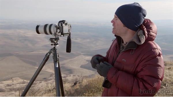 Isolating parts of the landscape using light: Landscape Photography: Washington's Palouse Region