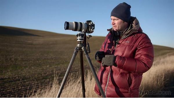 Shooting a series for a composite image: Landscape Photography: Washington's Palouse Region