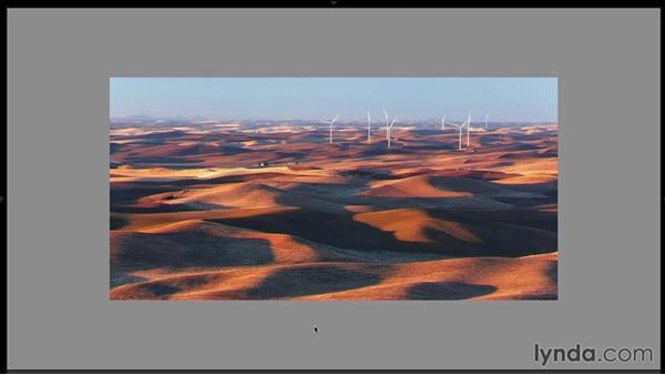 Reviewing the final images from the Palouse region: Landscape Photography: Washington's Palouse Region