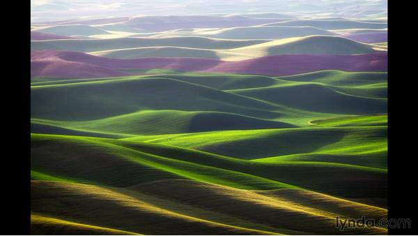 Getting started in landscape photography: Landscape Photography: Washington's Palouse Region