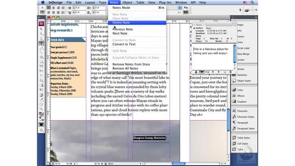Using notes: InDesign CS3 Long Documents