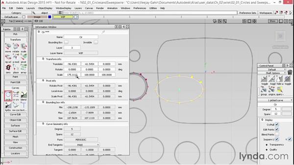 Curve primitives: Circles and sweeps: Alias Essential Training