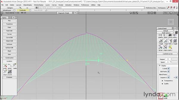 Analyze curve problems: Alias Essential Training