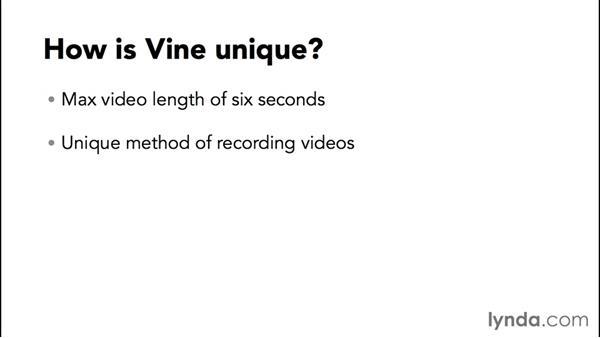 Understanding Vine: Up and Running with Vine