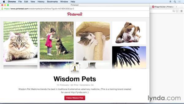 Pinterest account website links: Pinterest for Business