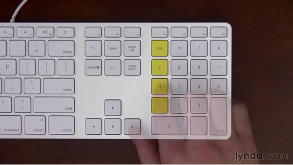 The numeric-keypad home row (the 4, 5, 6, and the plus keys): Numeric Data Entry Fundamentals