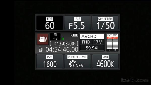 Shooting video: Up and Running with Micro Four-Thirds Cameras