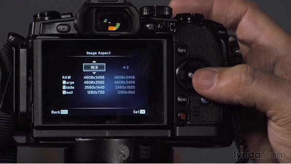 Essential menu settings: Up and Running with Micro Four-Thirds Cameras