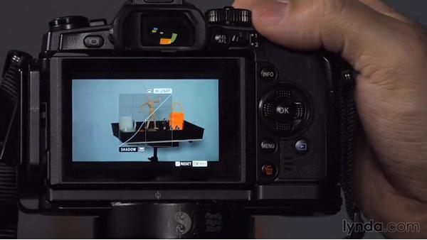 Shooting still photos: Up and Running with Micro Four-Thirds Cameras