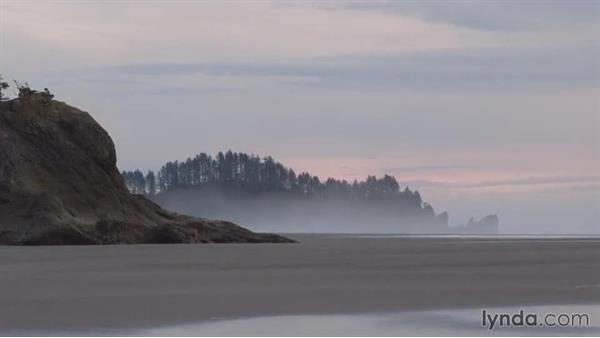 Welcome: Landscape Photography: Washington's Olympic National Park