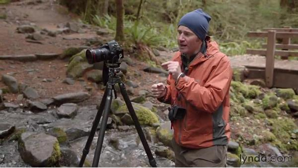 Taking a serene water shot in a flowing creek: Landscape Photography: Washington's Olympic National Park