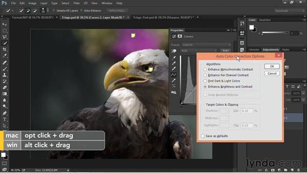 Performing triage (identify what's wrong): Nondestructive Exposure and Color Correction with Photoshop CC (2014)
