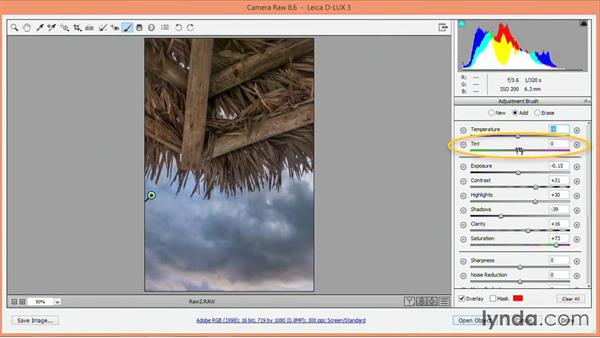 Recovering skies: Nondestructive Exposure and Color Correction with Photoshop CC (2014)