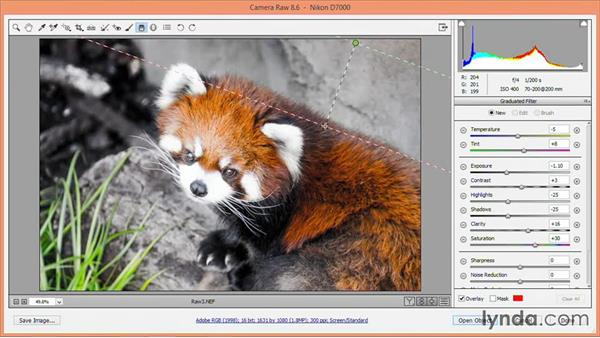 Selective adjustments: Nondestructive Exposure and Color Correction with Photoshop CC (2014)
