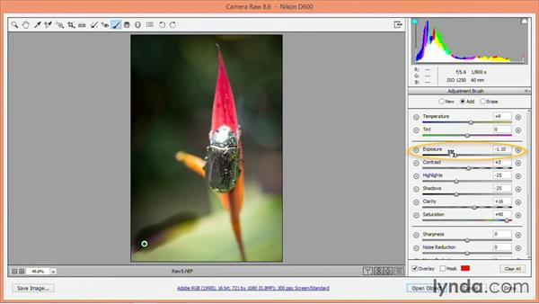 Removing spots and making local adjustments: Nondestructive Exposure and Color Correction with Photoshop CC (2014)