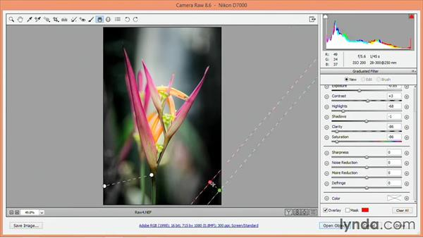 Using graduated adjustments: Nondestructive Exposure and Color Correction with Photoshop CC (2014)