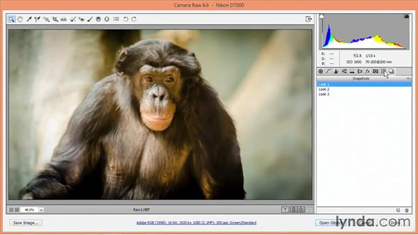 Saving multiple Develop settings: Nondestructive Exposure and Color Correction with Photoshop CC (2014)