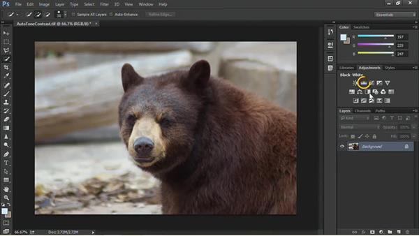 Save time with auto tone and auto contrast: Nondestructive Exposure and Color Correction with Photoshop CC (2014)