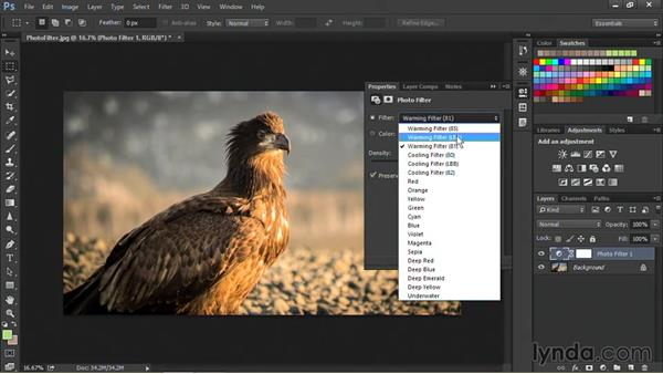 Adjusting color and exposure with the Photo Filter command: Nondestructive Exposure and Color Correction with Photoshop CC (2014)
