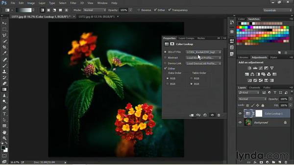 Using color lookup tables to process images: Nondestructive Exposure and Color Correction with Photoshop CC (2014)