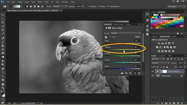 Creating black-and-white images: Nondestructive Exposure and Color Correction with Photoshop CC (2014)