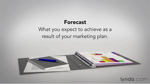 Writing the budget and forecast sections: Writing a Marketing Plan