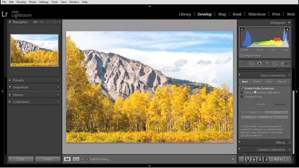 Performing initial raw processing in Lightroom: Using Lightroom and Photoshop Elements Together
