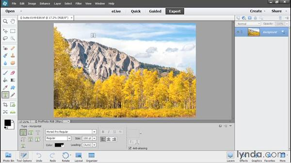 Editing pixels in Elements: Using Lightroom and Photoshop Elements Together