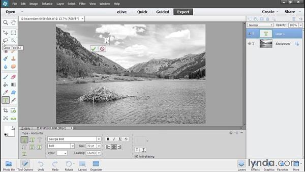 Choosing Edit a Copy with Lightroom adjustments: Using Lightroom and Photoshop Elements Together