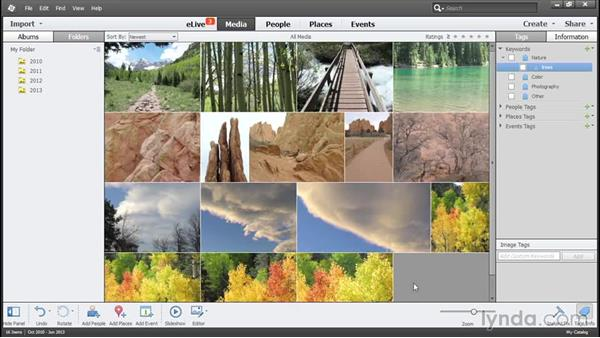 Managing photos in the Elements Organizer: Using Lightroom and Photoshop Elements Together