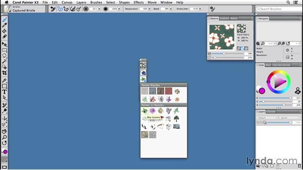 Using media selectors: Painter 2015 Essential Training