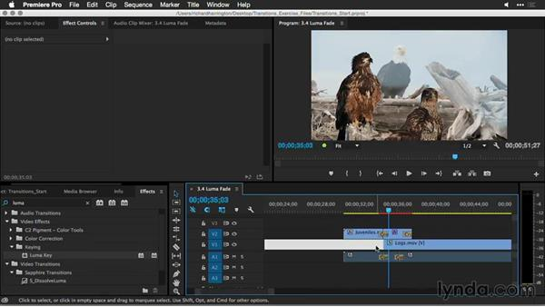 Luma fade: Premiere Pro Guru: Better Transitions