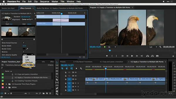 Apply a transition to multiple edit points: Premiere Pro Guru: Better Transitions