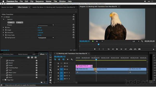 NewBlueFX: Premiere Pro Guru: Better Transitions