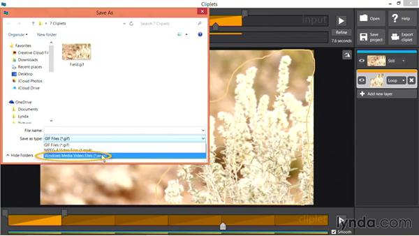 Exporting GIF images from Cliplets: Pictures that Move: Creating Cinemagraphs with Photoshop, After Effects, Flixel, and Cliplets