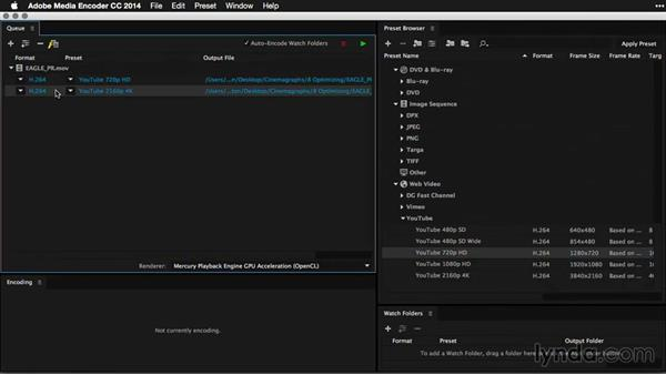 Recompressing video with Adobe Media Encoder: Pictures that Move: Creating Cinemagraphs with Photoshop, After Effects, Flixel, and Cliplets