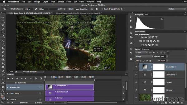 Next steps: Pictures that Move: Creating Cinemagraphs with Photoshop, After Effects, Flixel, and Cliplets