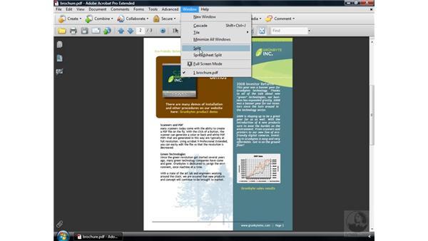 Understanding the window views: Acrobat 9 Pro Essential Training