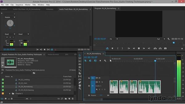 Normalizing: Premiere Pro Guru: Audio Finishing Techniques