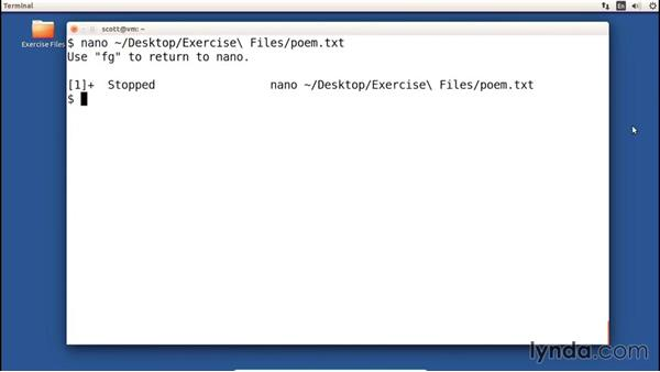 Switching back to the command line with suspend: Up and Running with nano