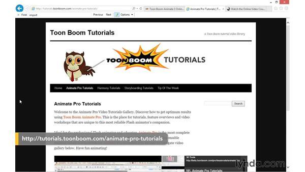 Next steps: Toon Boom Animate and Harmony Essential Training